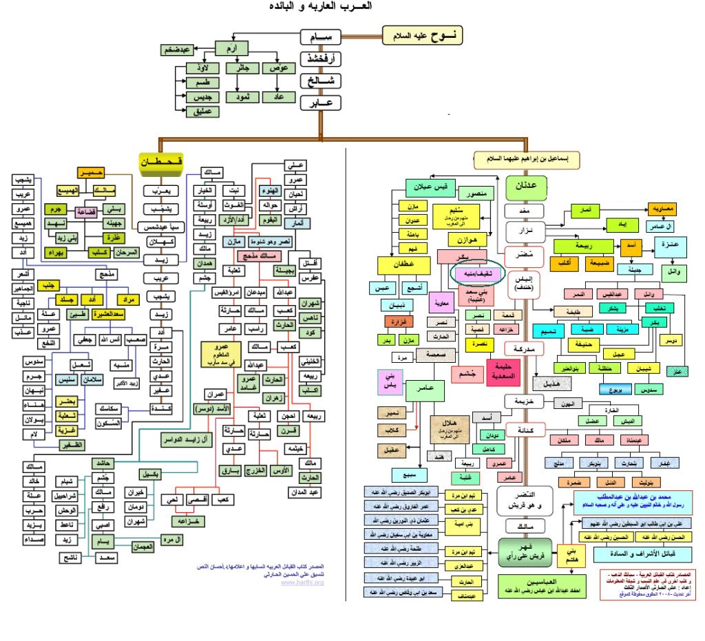 arbre généalogique des arabes